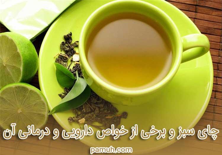 چای سبز و برخی از خواص دارویی و درمانی آن