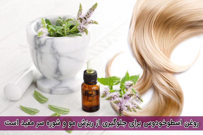 روغن اسطوخودوس برای جلوگیری از ریزش مو و شوره سر مفید استروغن اسطوخودوس برای جلوگیری از ریزش مو و شوره سر مفید است
