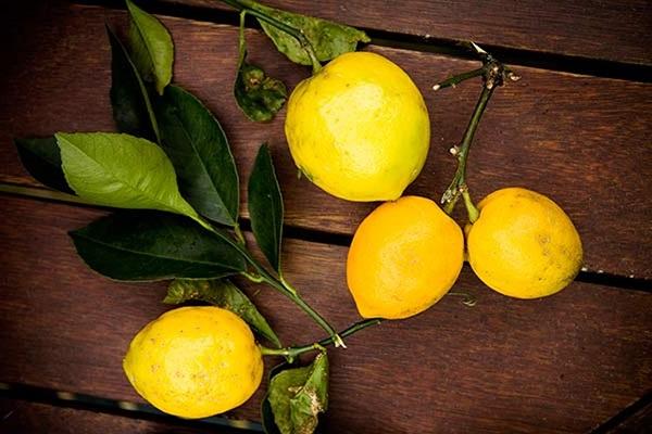 آب لیمو برای درمان موکوسل موثر است