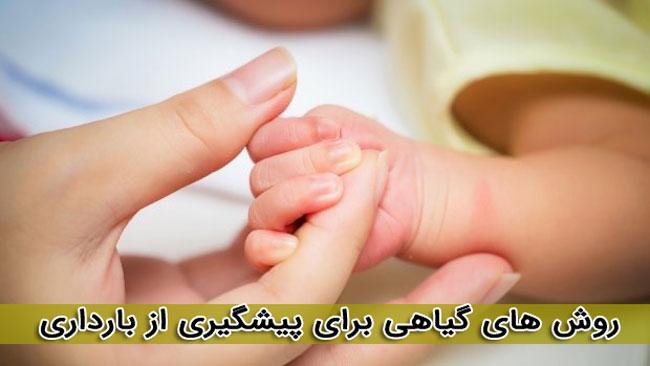 جلوگیری از بارداری با 17 گیاهان دارویی