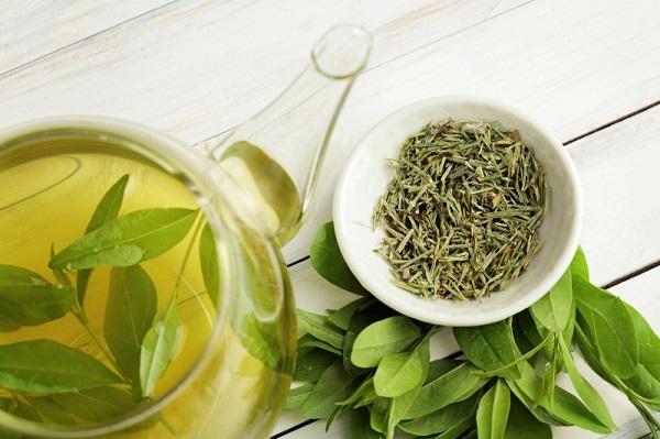 چای سبز برای رفع جوش های پشت و شانه