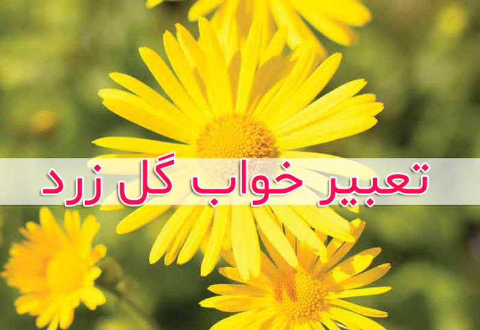 تعبیر خواب گلهای زرد