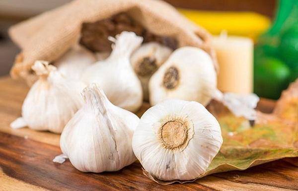 سیر برای درمان قارچ های پوستی یا درماتوفیتوز