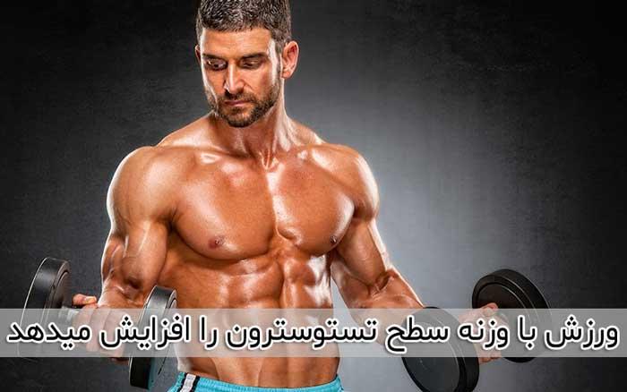 وزنه زدن می تواند هورمون تستوسترون را افزایش دهد