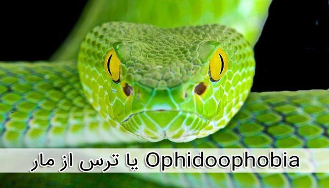 ترس از مار Ophidiophobia