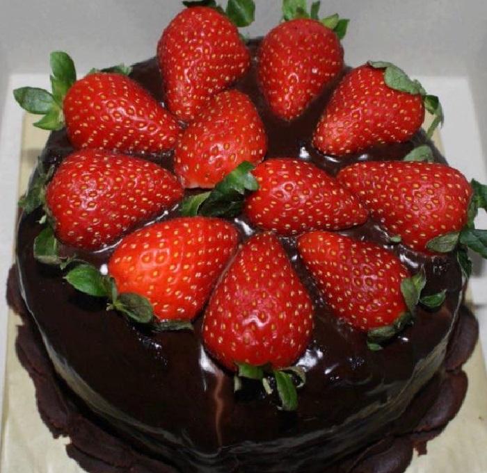 طرز تهیه کیک شکلاتی در فر و طرز تهیه کیک شکلاتی بدون فر و عکس کیک شکلاتی