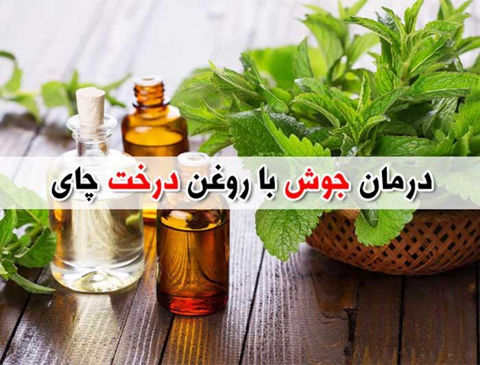 خواص روغن درخت چای برای جوش - درمان آکنه